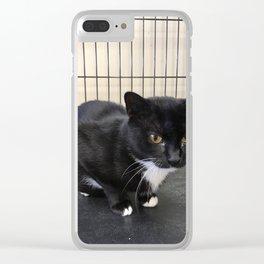 Adoptable Tuxedo Black & White Dutchess Cat Clear iPhone Case