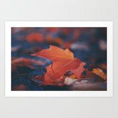 Red Autumn Leaf Art Print