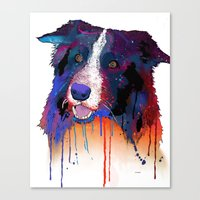 border collie Canvas Prints featuring Border Collie by Marlene Watson