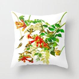 Ruby-throated Humming Bird Throw Pillow