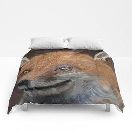 Nox The Fox Comforters