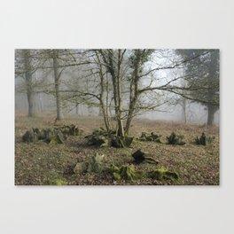 Woodland Roots Canvas Print