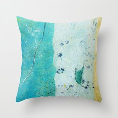 butterfly (2 of 4) Throw Pillow