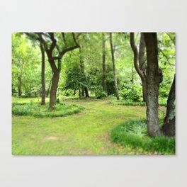 Kenilworth Marsh Canvas Print