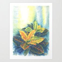 Сolorful Leaves Art Print