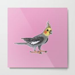 Cockatiel bird Metal Print
