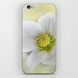 the beauty of a summerday -58- iPhone Skin