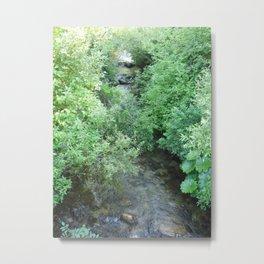A stream runs through it Metal Print