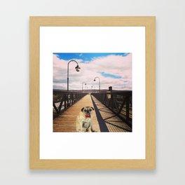 Pug on a Bridge Framed Art Print