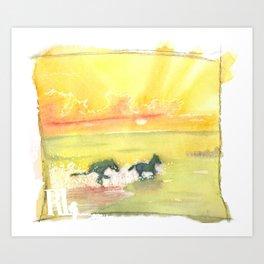 splash of sun Art Print