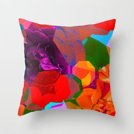 COLOURFUL DREAM 4 Throw Pillow