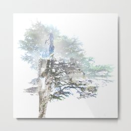 Where the sea sings to the trees - 5 Metal Print