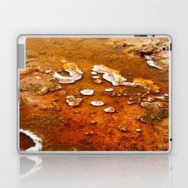 Orange Texture Laptop & iPad Skin