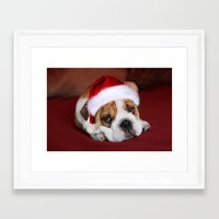 bulldog Framed Art Prints featuring Bulldog by Julie Hoddinott