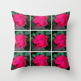 Roses in Southern Garden Throw Pillow