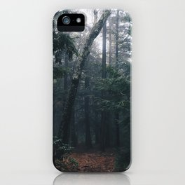 Haines Falls #02 iPhone Case