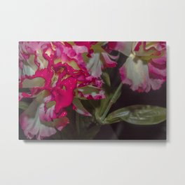 Dripping Pink Metal Print