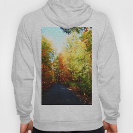 Into the Fall Forest Hoody