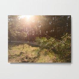 Call Of The Woods Metal Print