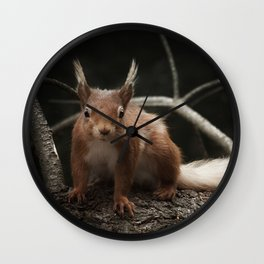 Cheeky red squirrel Wall Clock