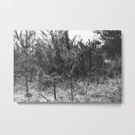 BLACK AND WHITE // TREES Metal Print