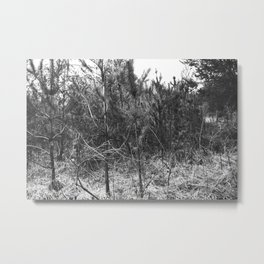 BLACK AND WHITE // TREES Metal Print