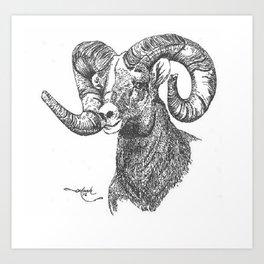 full curl Art Print