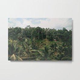 Bali Tegalalang Metal Print