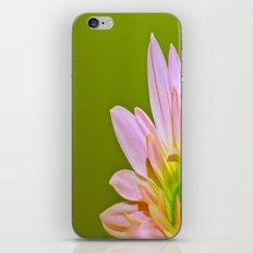 Pink Daisy iPhone & iPod Skin