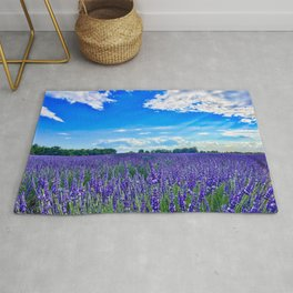 Wildflowers Blooming in a Meadow | Purple Lavender Perennials Deep Blue Sky Spring Landscape France Rug