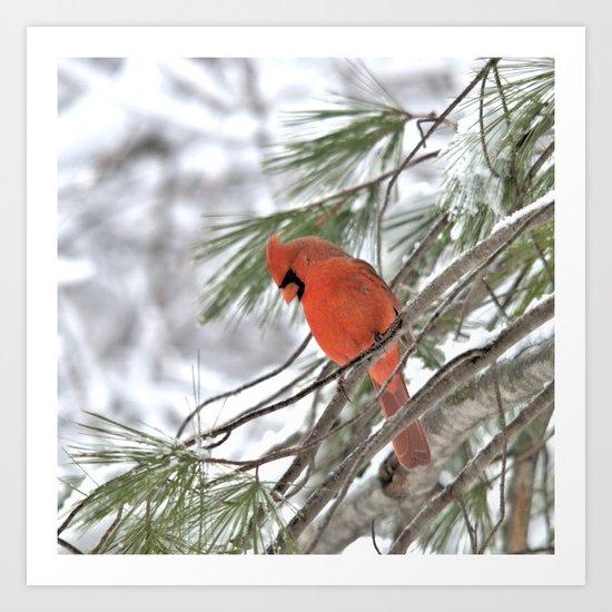 Snow Globe Cardinal (square) Art Print