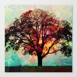Fall Tree 2 Canvas Print