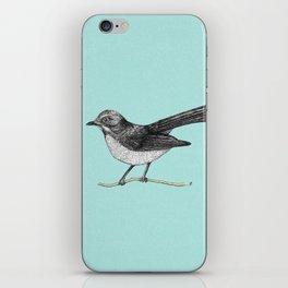 Willy Wagtail iPhone Skin