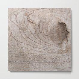 Oak tree Metal Print