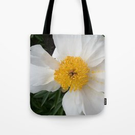 White Beauty by Teresa Thompson Tote Bag