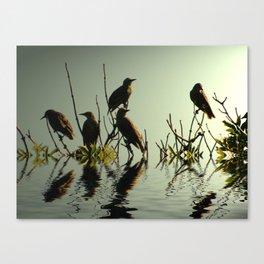Starling Sunset Canvas Print