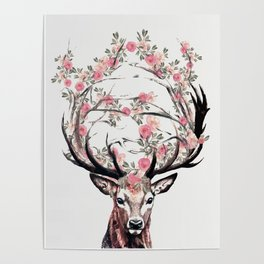 Deer and Flowers Poster