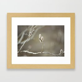 Willow Dreams Framed Art Print
