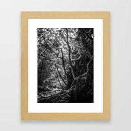 Missisquoi River in Vermont - 1 BW Framed Art Print