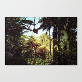 Sunlit Palm Canvas Print