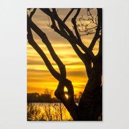 Tree Sunrise Canvas Print