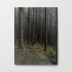 Gorge Woods Metal Print