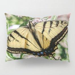 Swallowtail Butterfly Pillow Sham