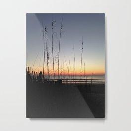 Sunrise oats Metal Print