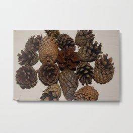 acorns Metal Print