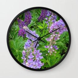 Lupins Wall Clock
