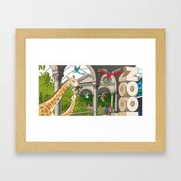 St. Louis Zoo Giraffes Framed Art Print