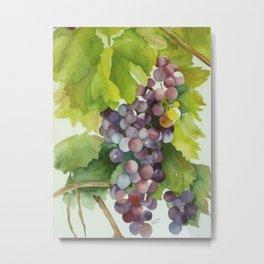 Wine on the Vine Metal Print