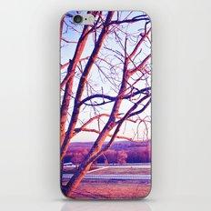 Du Nord iPhone & iPod Skin