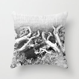 Transitions in nature part 2 Throw Pillow